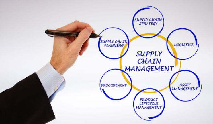 training Supply Chain Concept